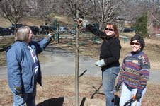 New TreeStewards learned the art of pruning during class