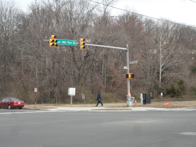 Forested intersection